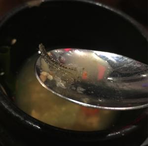 Soup invader